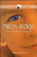 Niños indigo. realidad del tercer milenio