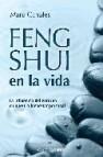 Feng shui en la vida: la influencia del entorno en nuestro bienes tar personal